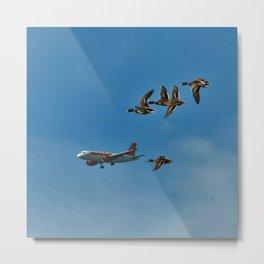 Fly high Metal Print