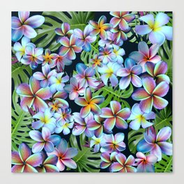 Rainbow Plumeria Dark Canvas Print