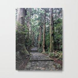 Kumano Kodo Trees Nachikatsuura, Wakayama, Japan Metal Print