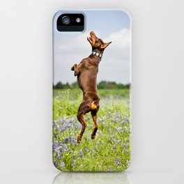 Spring In Texas iPhone Case