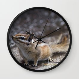 The Chipper Chipmunk Wall Clock