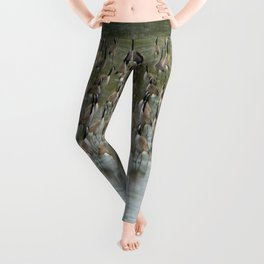 Canada Geese Partial Frozen Lake Leggings