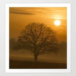 Oak Tree Winter Time Art Print