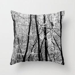 Forest (Pennsylvania) Throw Pillow