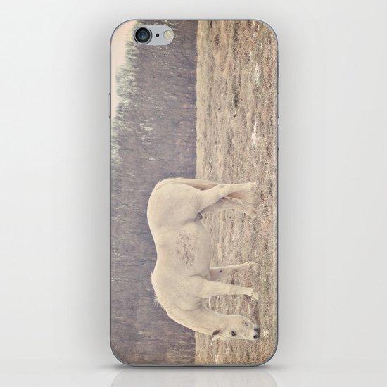 Pretty White Pony  iPhone & iPod Skin