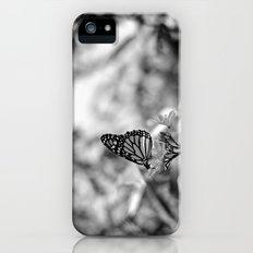 Papillion en  Noir Slim Case iPhone SE