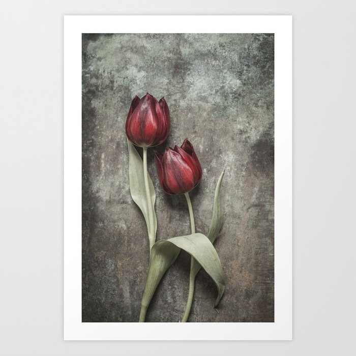 Red Tulips II Art Print
