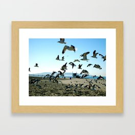 Seagulls and the Sea Framed Art Print