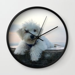 Teddy At Sunset Wall Clock