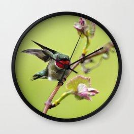 Hummingbird I Wall Clock