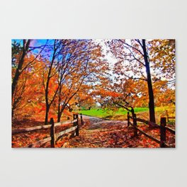 Autumn Walkway Canvas Print