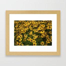 Yellow Garden Flowers Framed Art Print