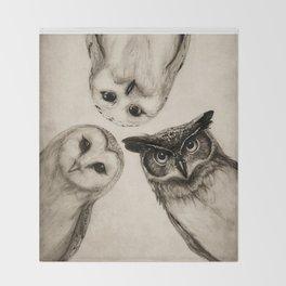 The Owl's 3 Decke