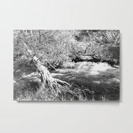 Caught in the Current Metal Print