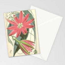 Passiflora antioquiensis (as Tacsonia van volxemii) Bot. Mag. 92. t. 5571. 1866 Stationery Cards