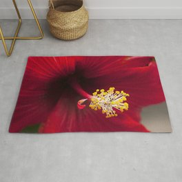 Scarlet Ruby Red Tropical Hibiscus Flower Chic Close-Up Rug
