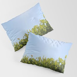 Summer Photos, Nature Photography, fine art gifts, Landscape Photo, sunshine photo Pillow Sham