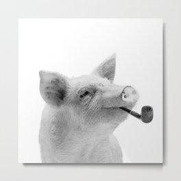 Mr piggy Metal Print
