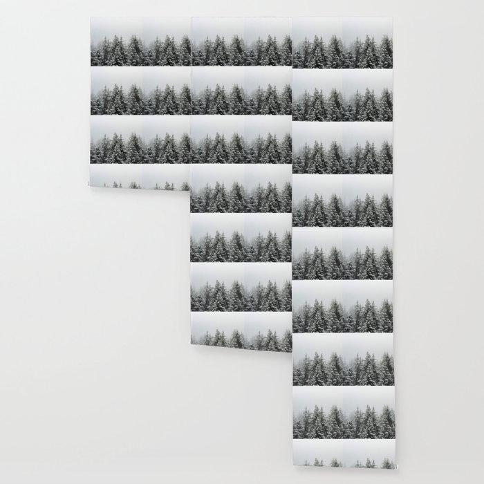 Winter Forest Fir Tree Snow III - Nature Photography Wallpaper