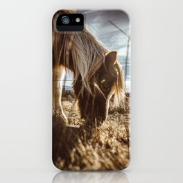Grayson Highlands iPhone Case