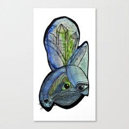 conejo de la soledad Canvas Print