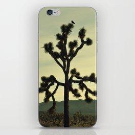 JOSHUA TREE - NATIONAL PARK - MOJAVE DESERT - CALIFORNIA iPhone Skin
