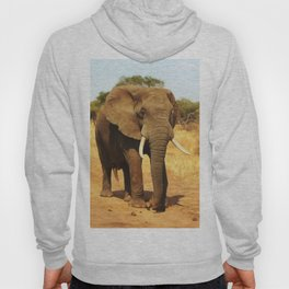 ELEPHANT WALK Hoody