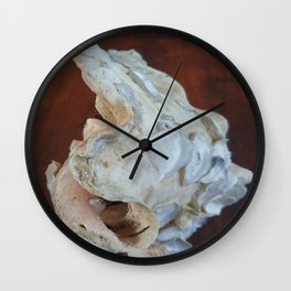 Ancienne conque 2 Wall Clock