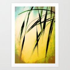 Grass in the light Art Print