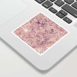 Pink flowers Sticker