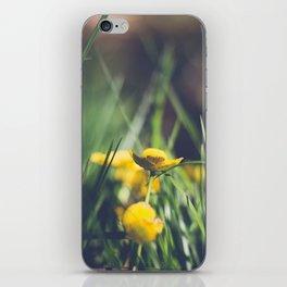 Yellow Flower in Green Grass iPhone Skin