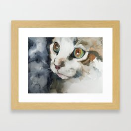 cat#13 Framed Art Print
