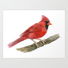Red Cardinal Watercolor Art Print