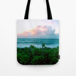 Succulents on the Beach Tote Bag