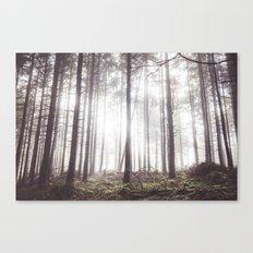 The light of dawn Canvas Print