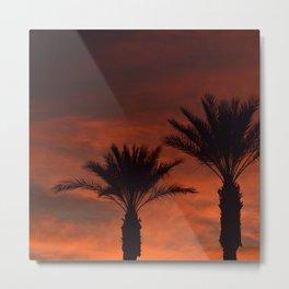 Palm Sunset - II Metal Print