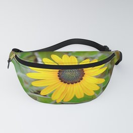 Captured Sun Fanny Pack