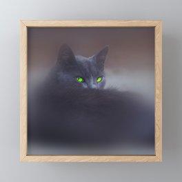 Black Cat with Green Eyes Framed Mini Art Print