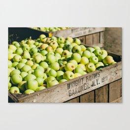 Bushel of Apples Canvas Print