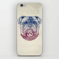 Gritty Bulldog iPhone & iPod Skin