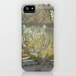 no tresspass tiger iPhone Case