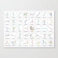 Mini Metros - U.S. and Canada (Color) Canvas Print