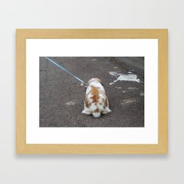 Bunny out for a walk Framed Art Print