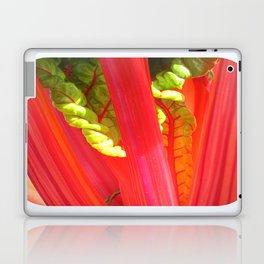 beauty in the mundane - nature's rainbow  Laptop & iPad Skin