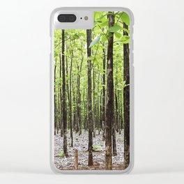 Teak Forest in Guanacaste, Costa Rica Clear iPhone Case