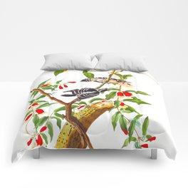 Downy Woodpecker Comforters
