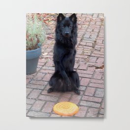 """""""Could you throw this for me?"""" Metal Print"""