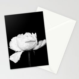 White Peony Black Background Stationery Cards