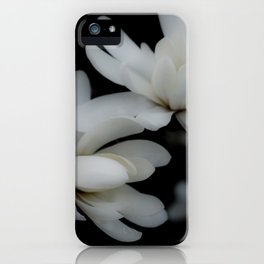 Delicacy iPhone Case