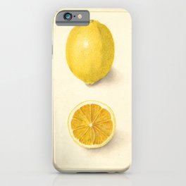 Vintage Botanical Lemon iPhone Case